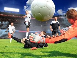 Собирать пазл The ball is in play онлайн