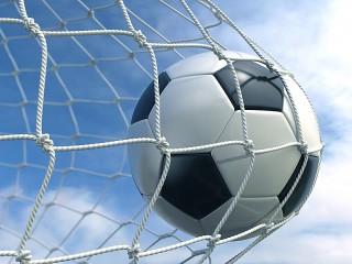Собирать пазл The ball in the net онлайн