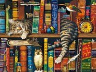 Собирать пазл On the book shelf онлайн
