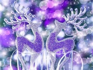 Собирать пазл Christmas reindeer онлайн