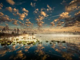 Собирать пазл The reflection and fog онлайн