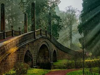 Собирать пазл Park in Scotland онлайн