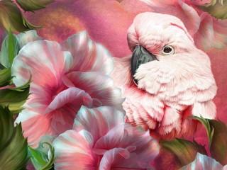 Собирать пазл Rosy cockatoo онлайн