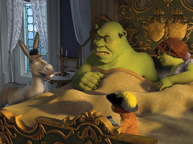 O quebra-cabeça Recolher o quebra-cabeças on-line - Shrek and Fiona