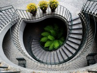 Собирать пазл Steps and fern онлайн