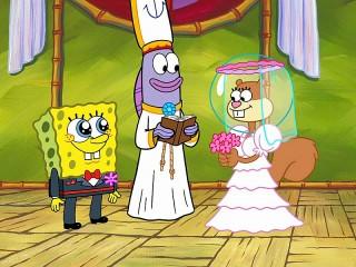 Собирать пазл Sponge marriage онлайн