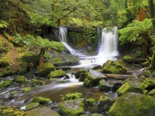 Собирать пазл Tasmanian waterfall онлайн