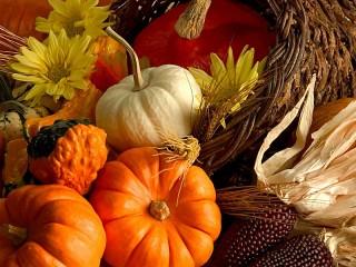 Собирать пазл Pumpkin онлайн