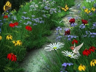 Собирать пазл The path among the grass онлайн