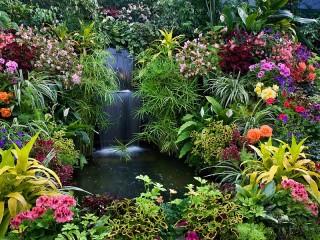 Собирать пазл Flower garden онлайн