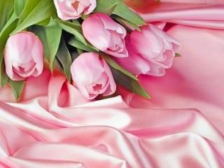 Собирать пазл The tulips and fabric онлайн