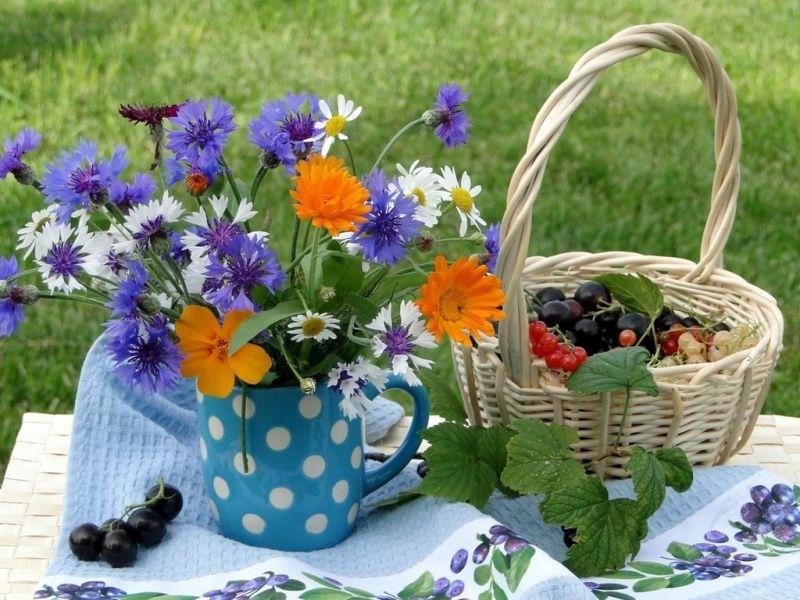 O quebra-cabeça Recolher o quebra-cabeças on-line - Morning in the garden