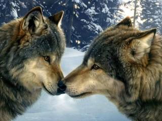 Собирать пазл Wolves 7 онлайн