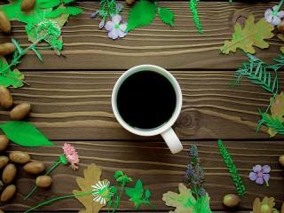 Собирать пазл Acorn coffee онлайн